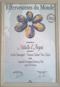 Médaille d'Argent au Concours des Effervescents du Monde 2014 de van hecke